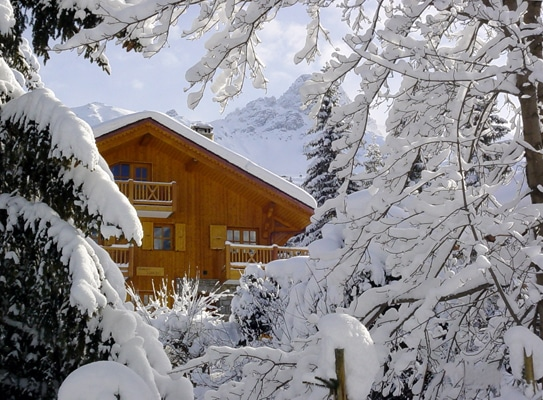 Tree View At Our Luxury Ski Chalet Tomkins In Meribel